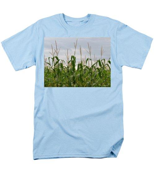 Corn Field Men's T-Shirt  (Regular Fit) by Laurel Powell