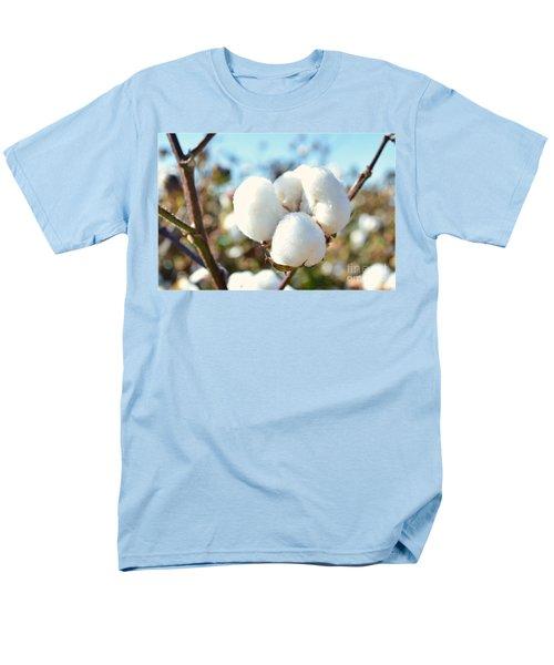 Cotton Boll Iv Men's T-Shirt  (Regular Fit) by Debbie Portwood