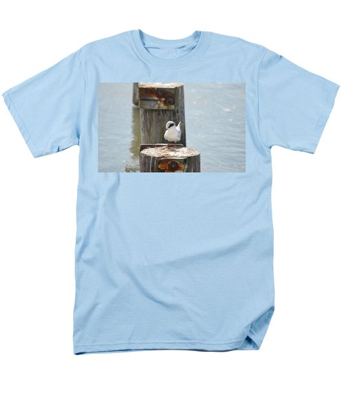 Forster's Tern Men's T-Shirt  (Regular Fit) by James Petersen