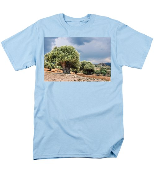 Olive Grove Men's T-Shirt  (Regular Fit) by Mike Santis