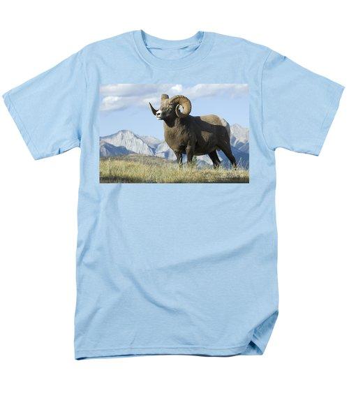 Rocky Mountain Big Horn Sheep Men's T-Shirt  (Regular Fit) by Bob Christopher