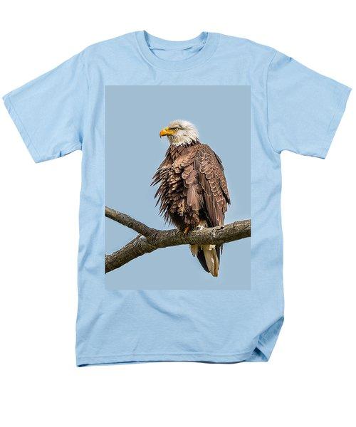 Ruffled Feathers Bald Eagle Men's T-Shirt  (Regular Fit)