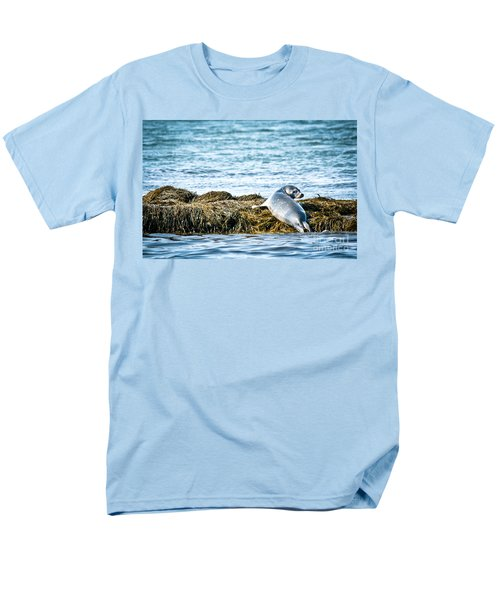 Sweet Seal Men's T-Shirt  (Regular Fit) by Cheryl Baxter