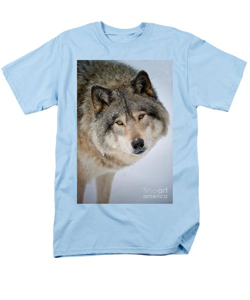 Timber Wolf Pictures 255 Men's T-Shirt  (Regular Fit) by Wolves Only