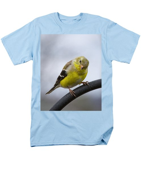 American Goldfinch Men's T-Shirt  (Regular Fit) by Brian Caldwell