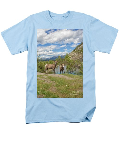 Bighorn Sheep In The Rocky Mountains Men's T-Shirt  (Regular Fit) by Patricia Hofmeester