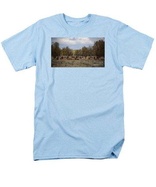 Bull Elk And Harem Men's T-Shirt  (Regular Fit) by Sandy Molinaro
