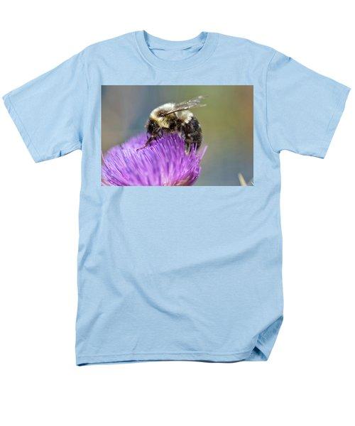 Bumblebee Men's T-Shirt  (Regular Fit)