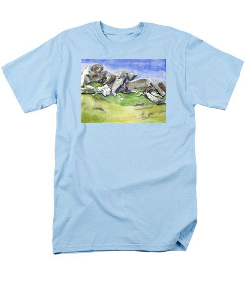 Fallen Stones Men's T-Shirt  (Regular Fit)