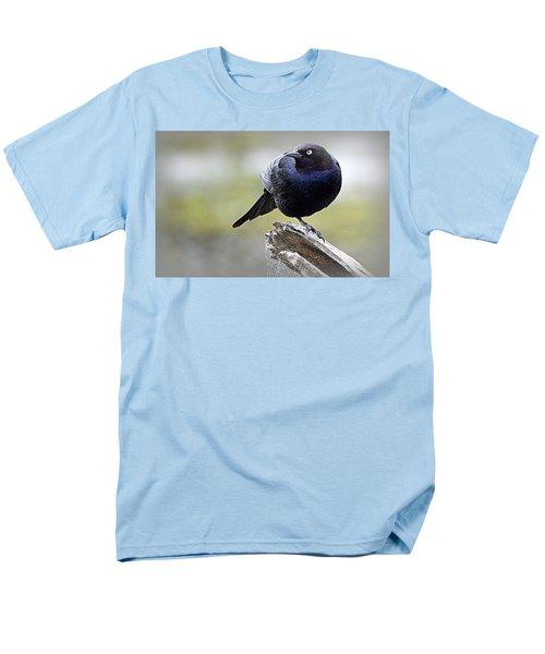 Grackle Resting Men's T-Shirt  (Regular Fit) by AJ Schibig