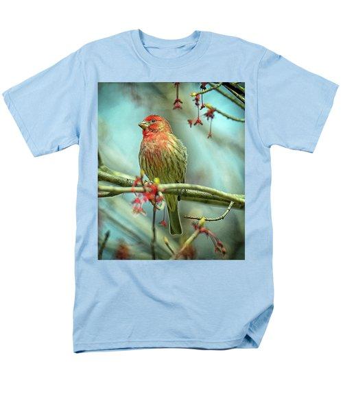 House Finch In Spring Men's T-Shirt  (Regular Fit)