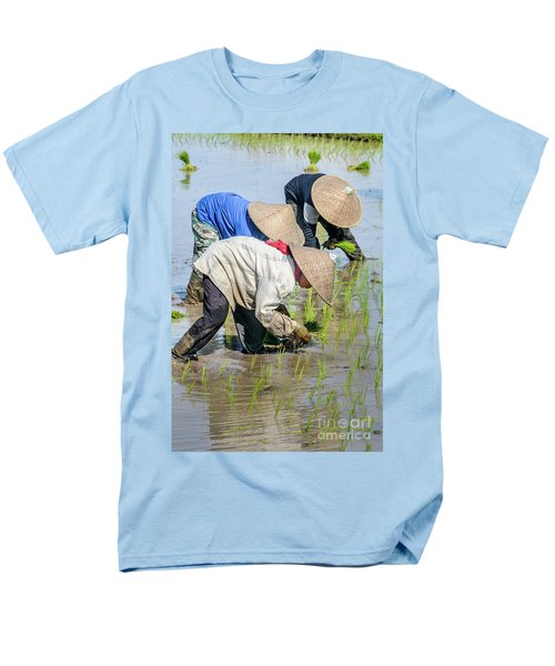 Paddy Field 2 Men's T-Shirt  (Regular Fit) by Werner Padarin