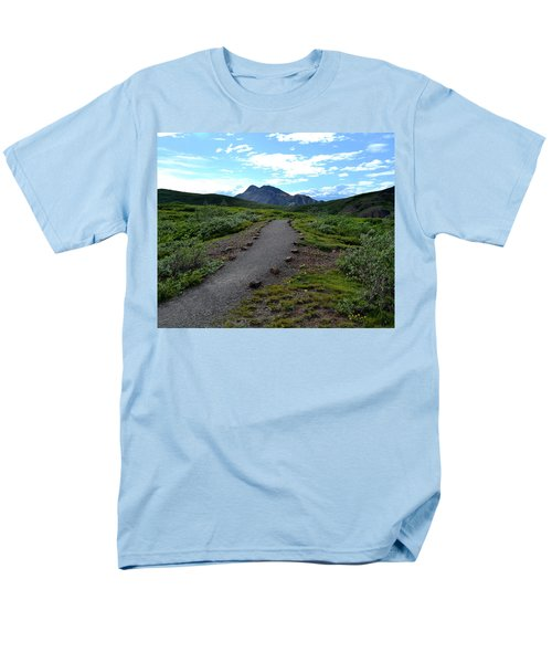 Polychrome Pass Trail, Denali Men's T-Shirt  (Regular Fit) by Zawhaus Photography