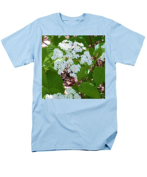 Queen Anne's Lace Men's T-Shirt  (Regular Fit) by Kay Gilley