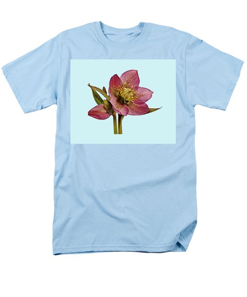 Red Hellebore Blue Background Men's T-Shirt  (Regular Fit) by Paul Gulliver