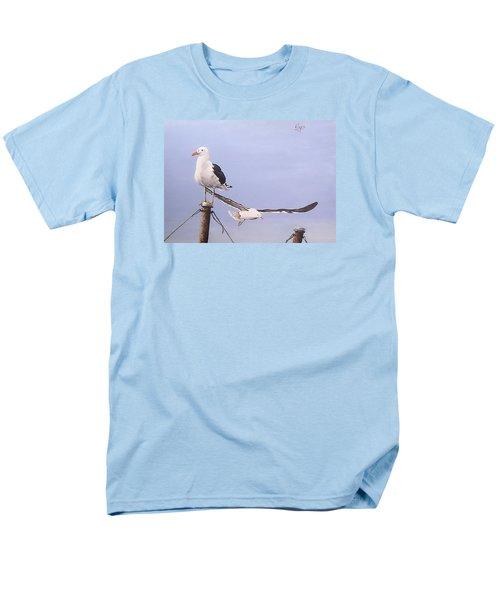 Seagulls Men's T-Shirt  (Regular Fit)