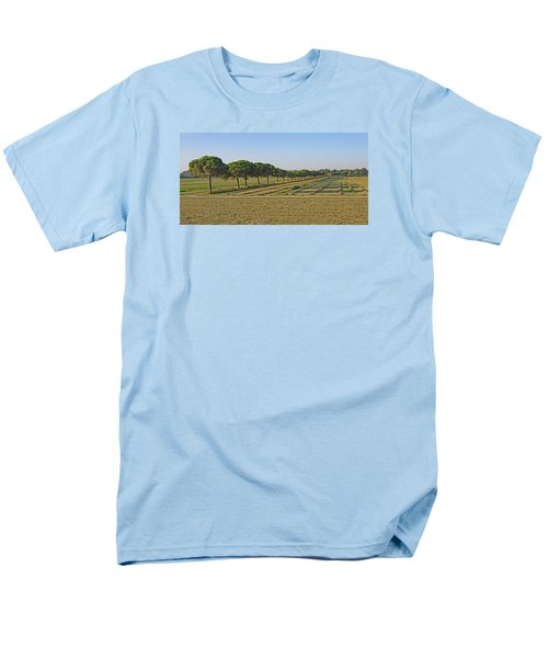 The Source Of Pine Nuts  Men's T-Shirt  (Regular Fit) by Allan Levin