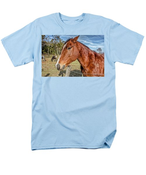 Men's T-Shirt  (Regular Fit) featuring the photograph Wild Horse In Smoky Mountain National Park by Peter Ciro