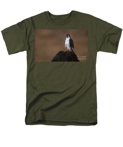Augur Buzzard Men's T-Shirt  (Regular Fit) by Art Wolfe
