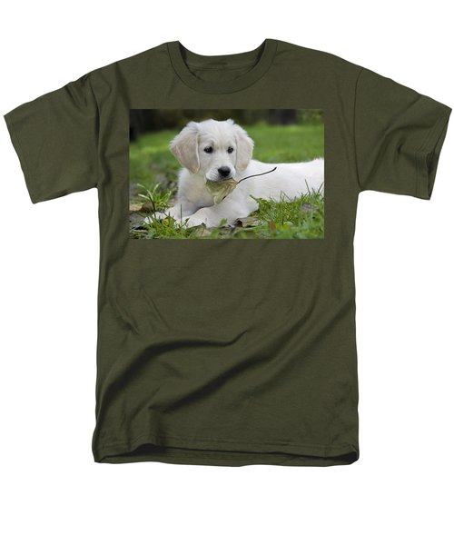 101130p064 Men's T-Shirt  (Regular Fit) by Arterra Picture Library