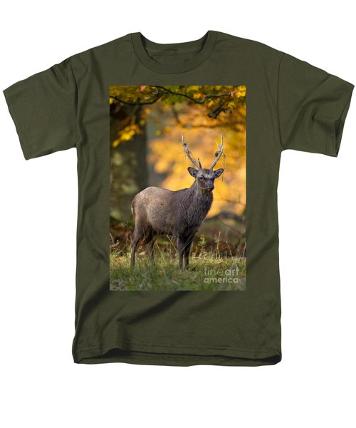 110307p073 Men's T-Shirt  (Regular Fit) by Arterra Picture Library