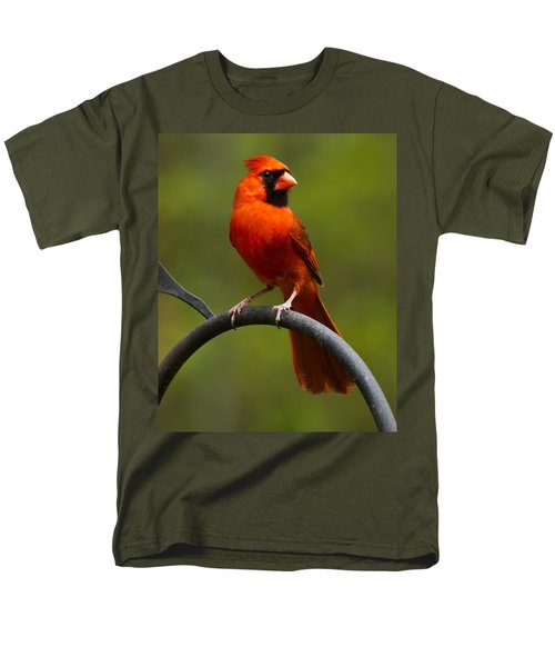 Male Cardinal Men's T-Shirt  (Regular Fit) by Robert L Jackson