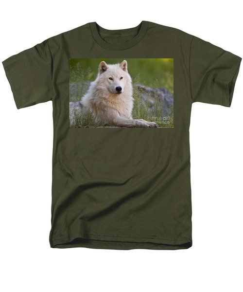 Arctic Wolf Men's T-Shirt  (Regular Fit) by Wolves Only