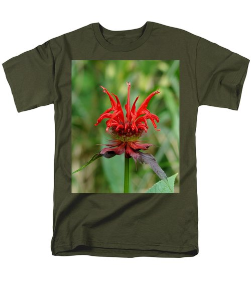 A Flowering Red Castle Beauty Men's T-Shirt  (Regular Fit) by Kim Pate