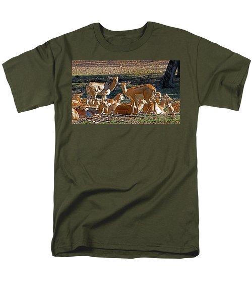 Blackbuck Female And Fawns Men's T-Shirt  (Regular Fit) by Miroslava Jurcik