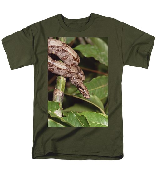 Boa Constrictor Coiled South America Men's T-Shirt  (Regular Fit) by Gerry Ellis