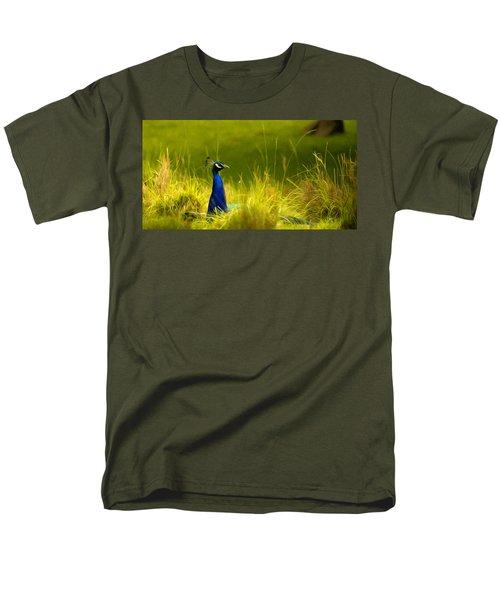 Bronx Zoo Peacock Men's T-Shirt  (Regular Fit)