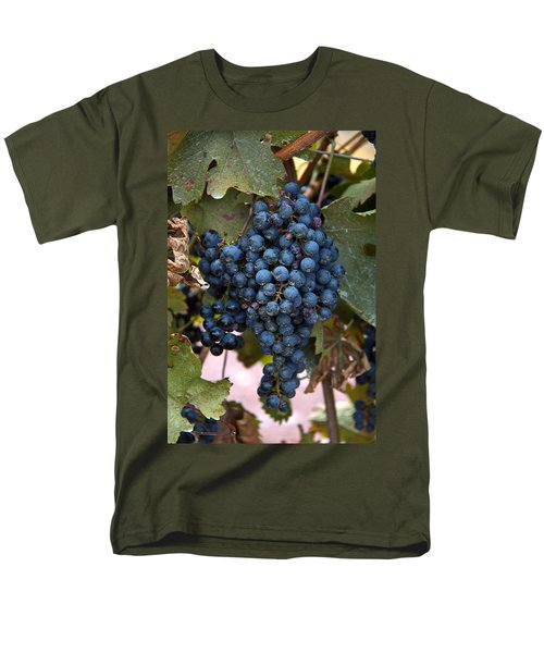 Concord Grapes Men's T-Shirt  (Regular Fit) by Leeon Pezok