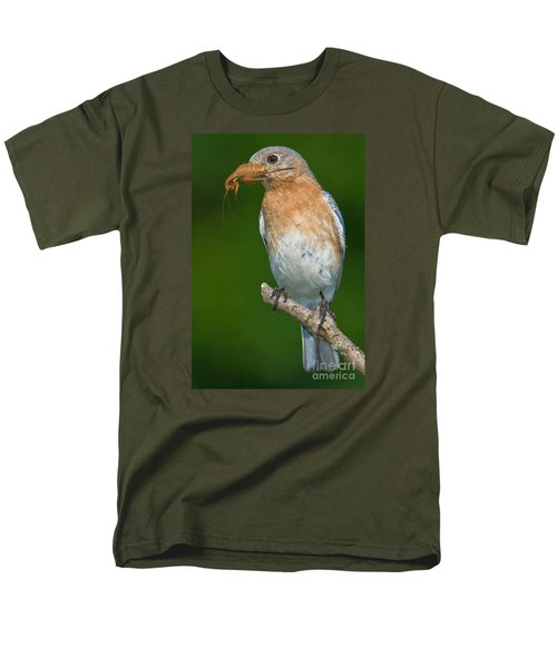 Eastern Bluebird With Katydid Men's T-Shirt  (Regular Fit) by Jerry Fornarotto