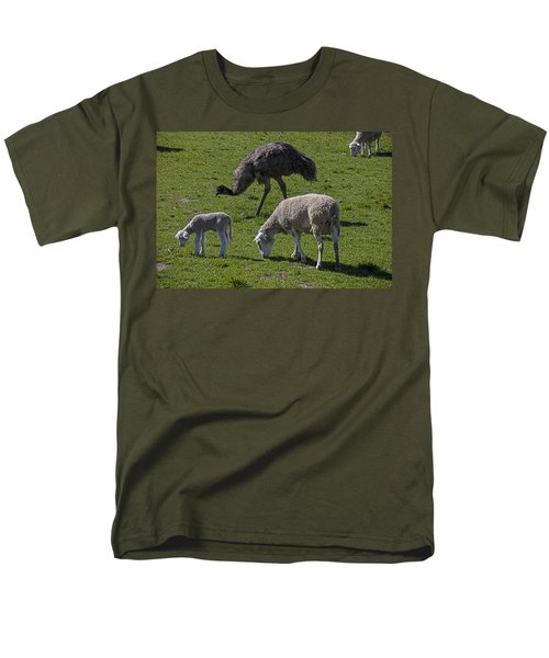 Emu And Sheep Men's T-Shirt  (Regular Fit) by Garry Gay