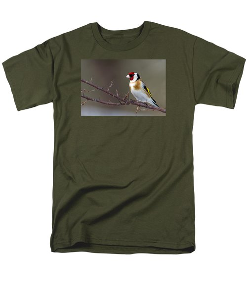 European Goldfinch  Men's T-Shirt  (Regular Fit) by Torbjorn Swenelius