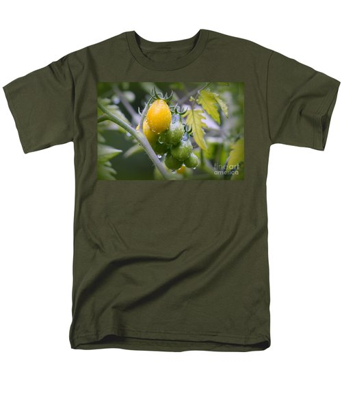 Fruits Of Our Labours Men's T-Shirt  (Regular Fit) by Leone Lund