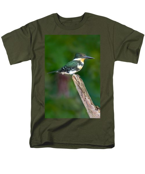 Green Kingfisher Chloroceryle Men's T-Shirt  (Regular Fit)