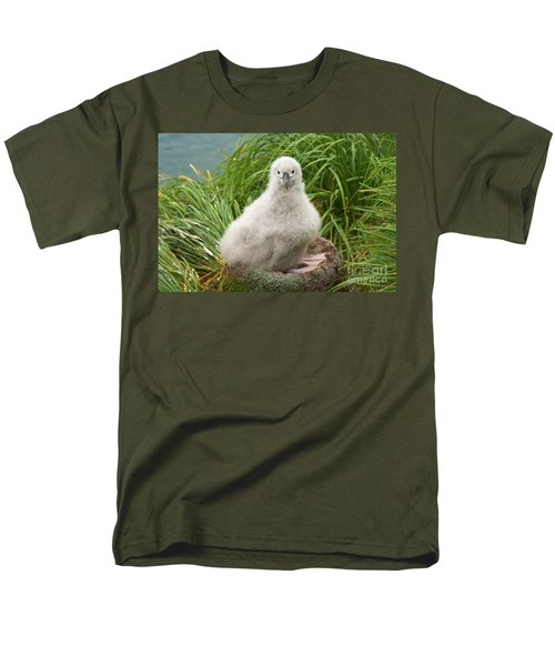 Grey-headed Albatross Chick Men's T-Shirt  (Regular Fit) by Yva Momatiuk John Eastcott
