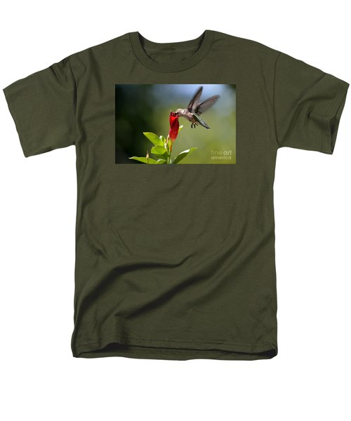 Hummingbird Dipping Men's T-Shirt  (Regular Fit) by Debbie Green