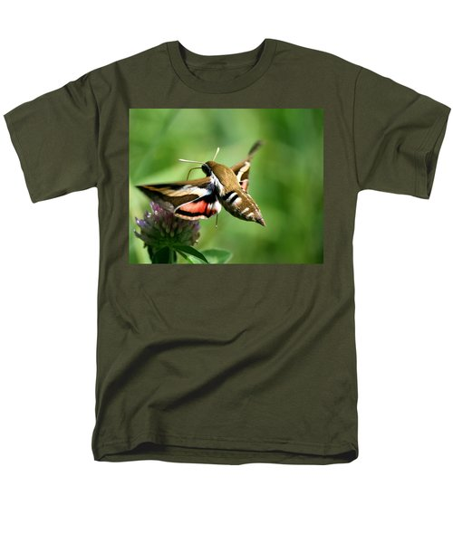 Hummingbird Moth From Behind Men's T-Shirt  (Regular Fit)