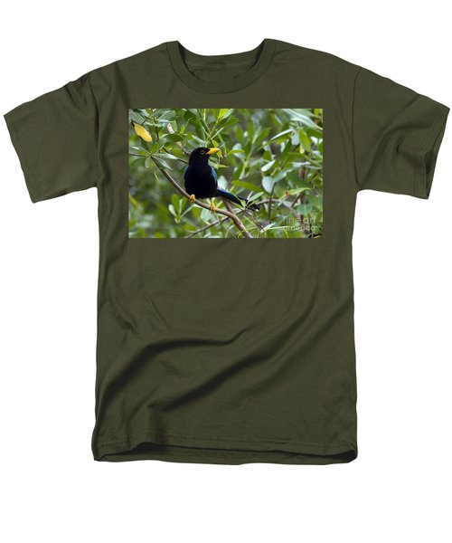 Immature Yucatan Jay Men's T-Shirt  (Regular Fit) by Teresa Zieba