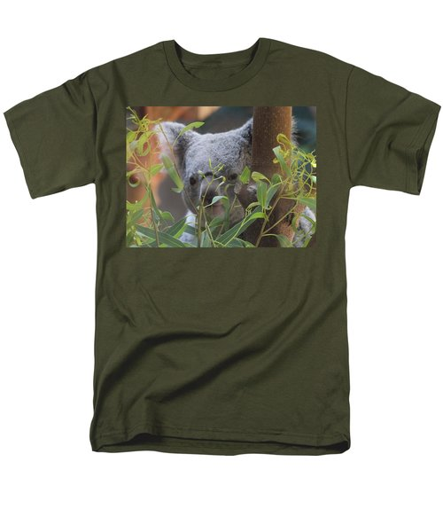 Koala Bear  Men's T-Shirt  (Regular Fit) by Dan Sproul