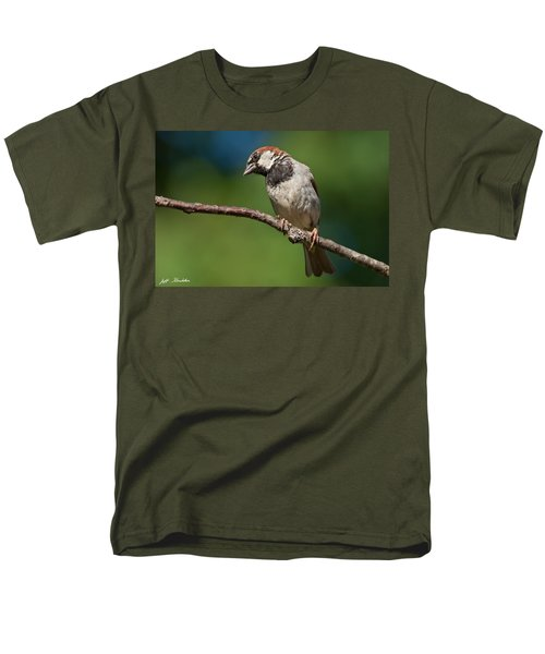 Male House Sparrow Perched In A Tree Men's T-Shirt  (Regular Fit) by Jeff Goulden