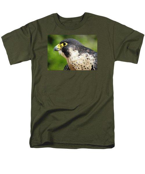 Peregrine Falcon Men's T-Shirt  (Regular Fit)