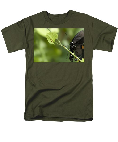 Men's T-Shirt  (Regular Fit) featuring the photograph Pipevine Swallowtail Mother With Eggs by Meg Rousher