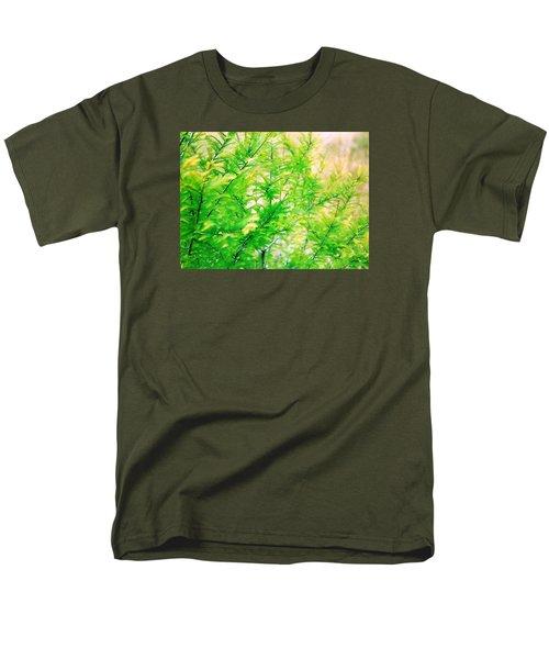 Spring Cypress Beauty Men's T-Shirt  (Regular Fit) by Belinda Lee