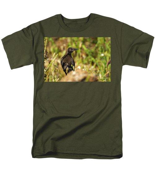 Starling Men's T-Shirt  (Regular Fit) by Guido Montanes Castillo