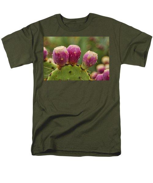The Prickly Pear  Men's T-Shirt  (Regular Fit) by Saija  Lehtonen