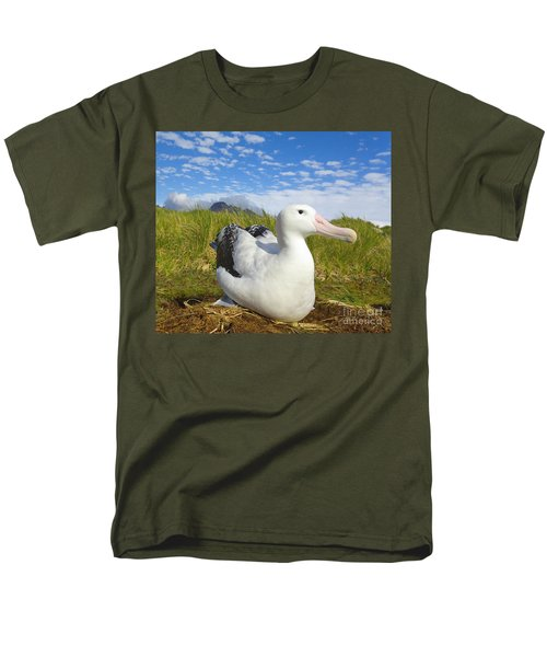 Wandering Albatross Incubating  Men's T-Shirt  (Regular Fit) by Yva Momatiuk John Eastcott
