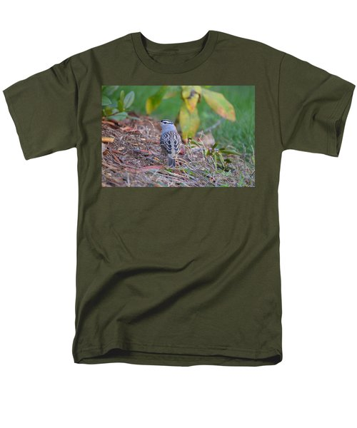 White-crowned Sparrow Men's T-Shirt  (Regular Fit) by James Petersen